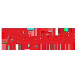 Raybestos Brake